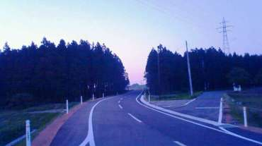 My_jogging_road